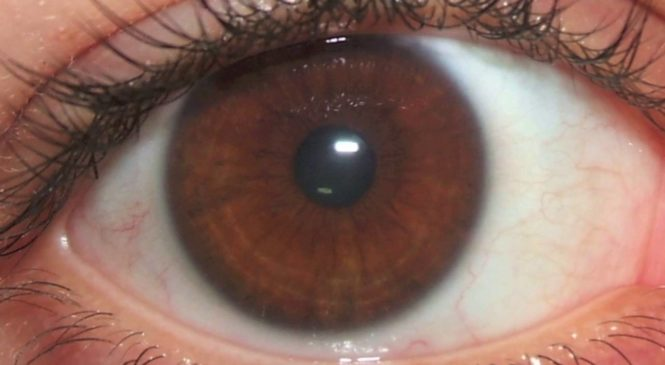Get Light Brown Eyes Fast! Subliminals Frequencies Hypnosis Biokinesis — Frequency Wizard